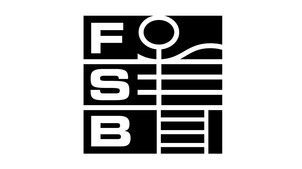 FSB Logo scharz/weiß