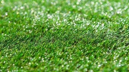 Artificial turf vs. natural grass