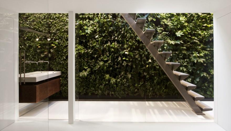 A vertical garden in the bathroom