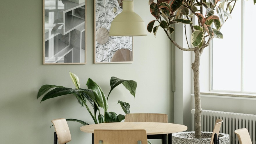 Trend green living at home