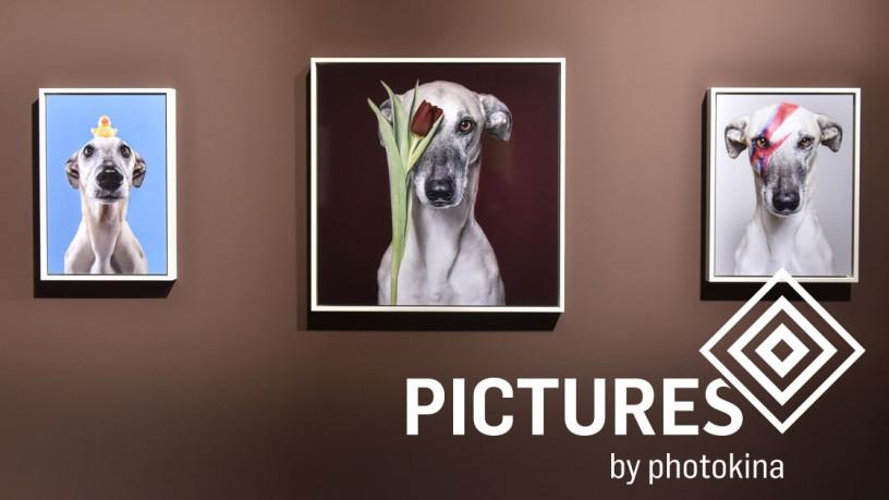 photokina Pictures