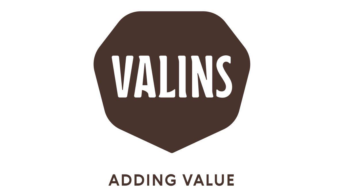 Logo Valins GmbH