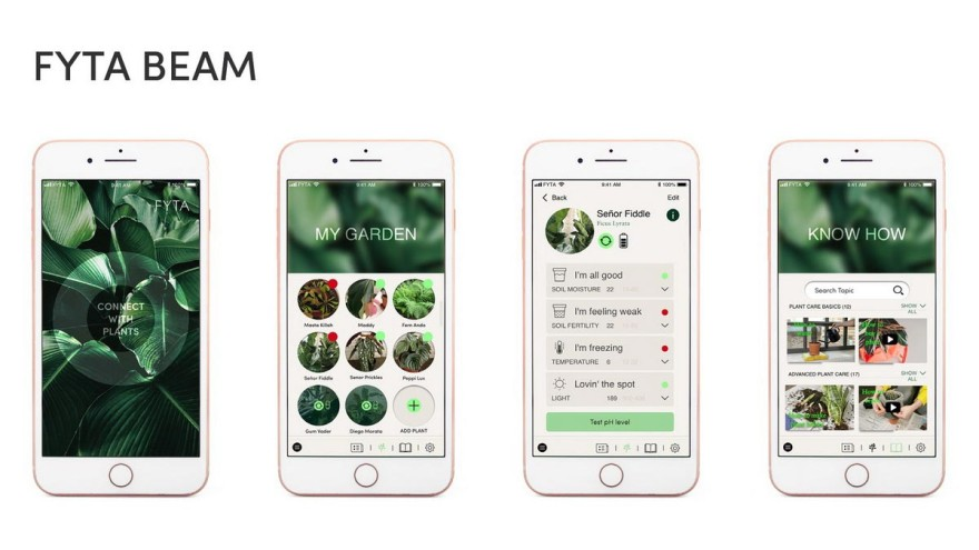 The user is informed about the needs of his room plants via the FYTA app. Furthermore, it contains many other useful and inspiring tips on the theme. – Photo: FYTA