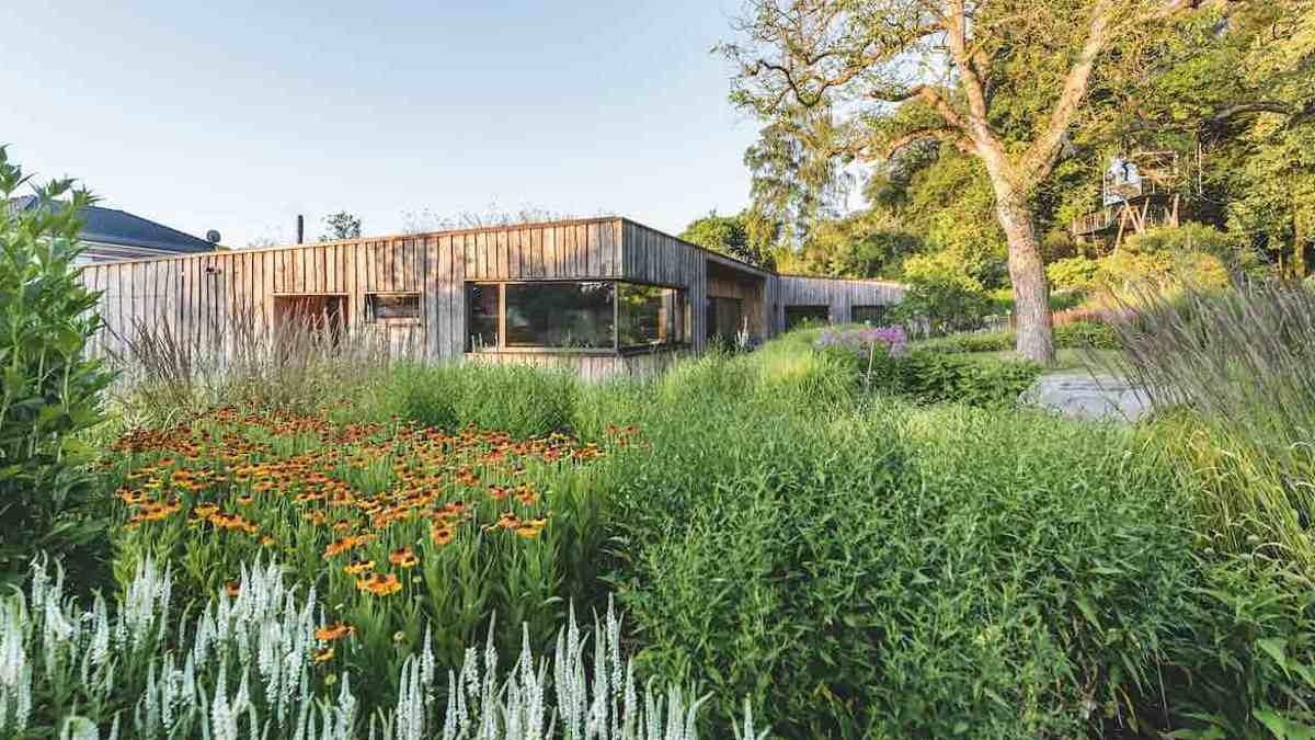 """Garten des Jahres 2021: Naturgarten """"Ein Teil der Pflanzenwelt"""" von Petra Pelz und GartenLandschaft Berg & Co.gartenplus © Callwey Verlag/Foto: Ferdinand Graf Luckner"""