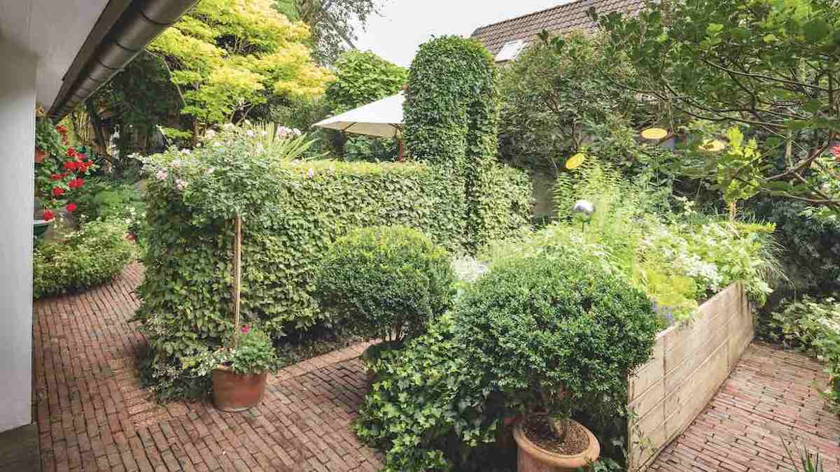 Honourable mention: Garden of the two landscape architects Helgard and Volker Püschel © Callwey Verlag/photo: Sibylle Pietrek