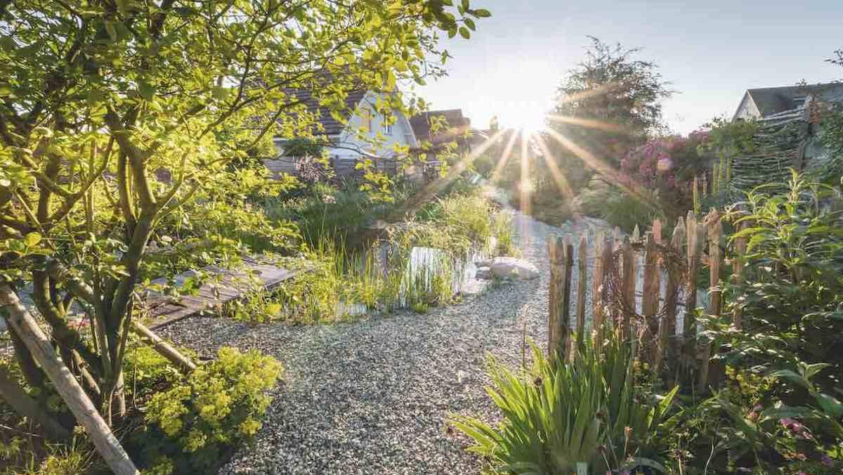 Anerkennung: Naturgarten von Hariyo Freiraumgestaltung © Callwey Verlag/Foto: Benedikt Dittli