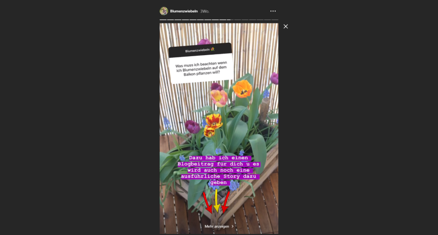 On Sundays the Garten Fräulein offers a regular question and answer session in her Instagram Story.