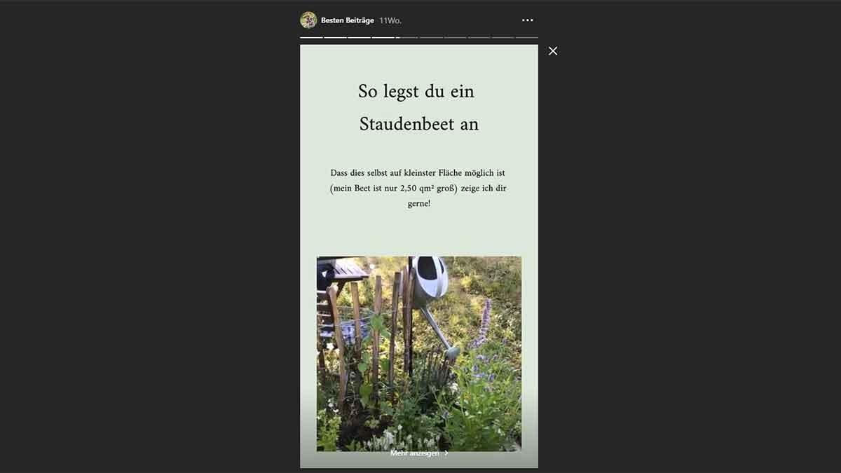 Das Garten Fräulein bietet ihren Nutzern viele Tipps zum erfolgreichen Gärtnern.