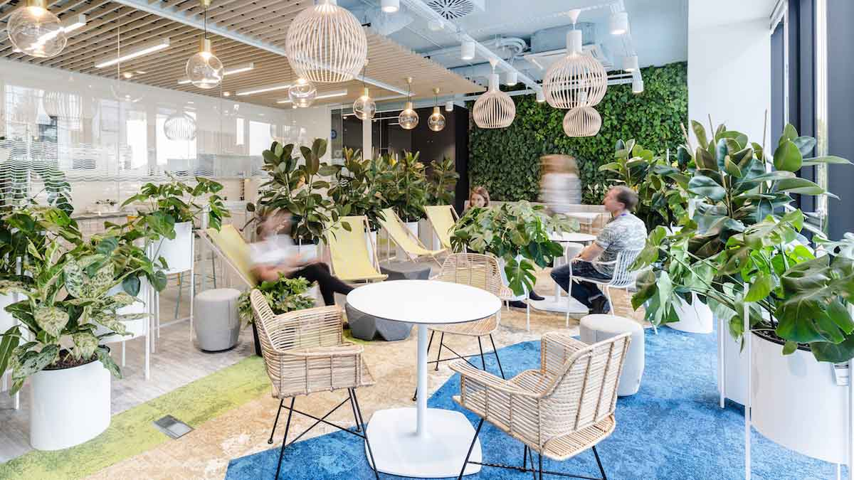 Green office: Added value with plants