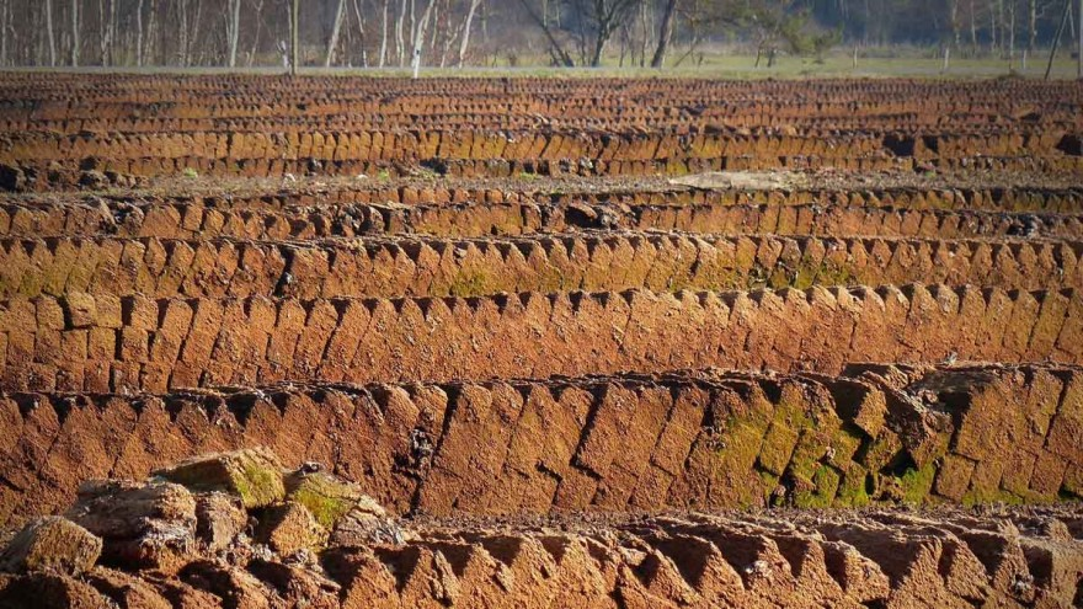 Peat extraction – Photo: bernswaelz / Pixabay