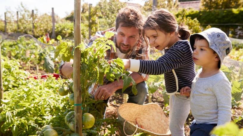 Trend theme: Sustainable gardens