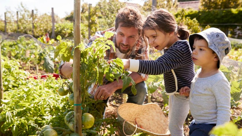 Trendthema: Nachhaltige Gärten