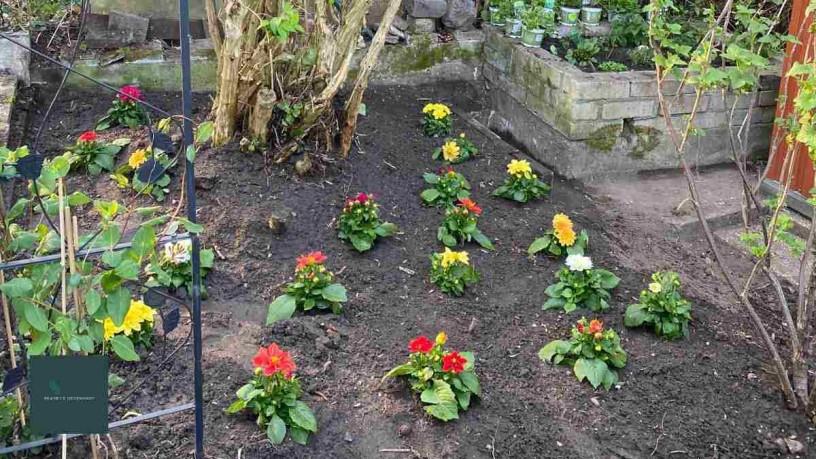 Projektgarten: Der Nachhaltige Garten der spoga+gafa