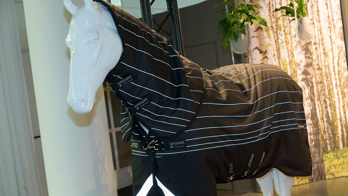 Clothing for horse and rider