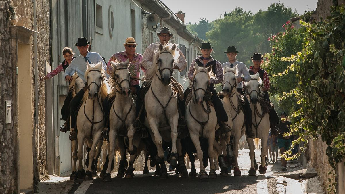 Spoga horse Country Check (1): The horse industry in France
