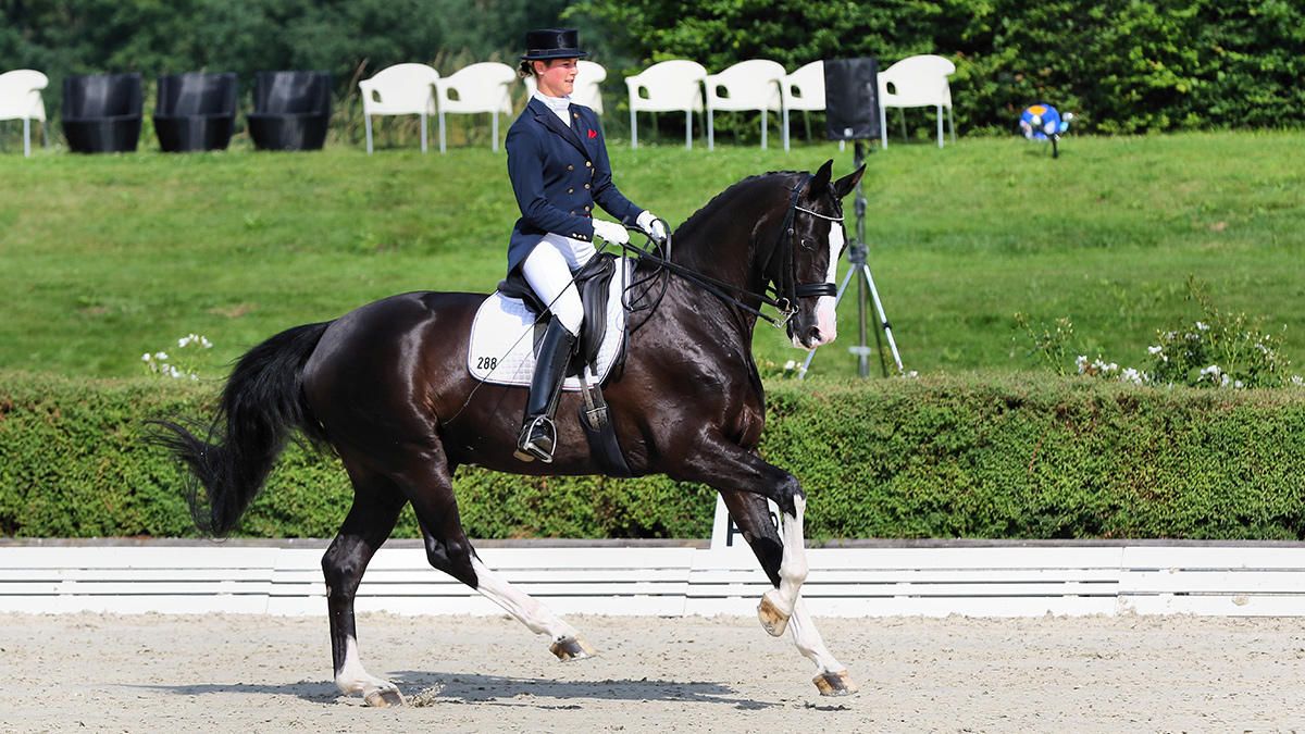Equestrian sport fashion manufacturers impress with quality and innovations