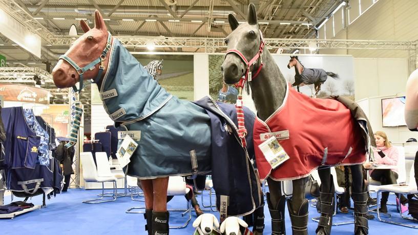 Voices about spoga horse