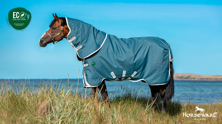 Horsewear Amigo